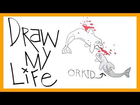Draw My Life: Orkid at SeaWorld