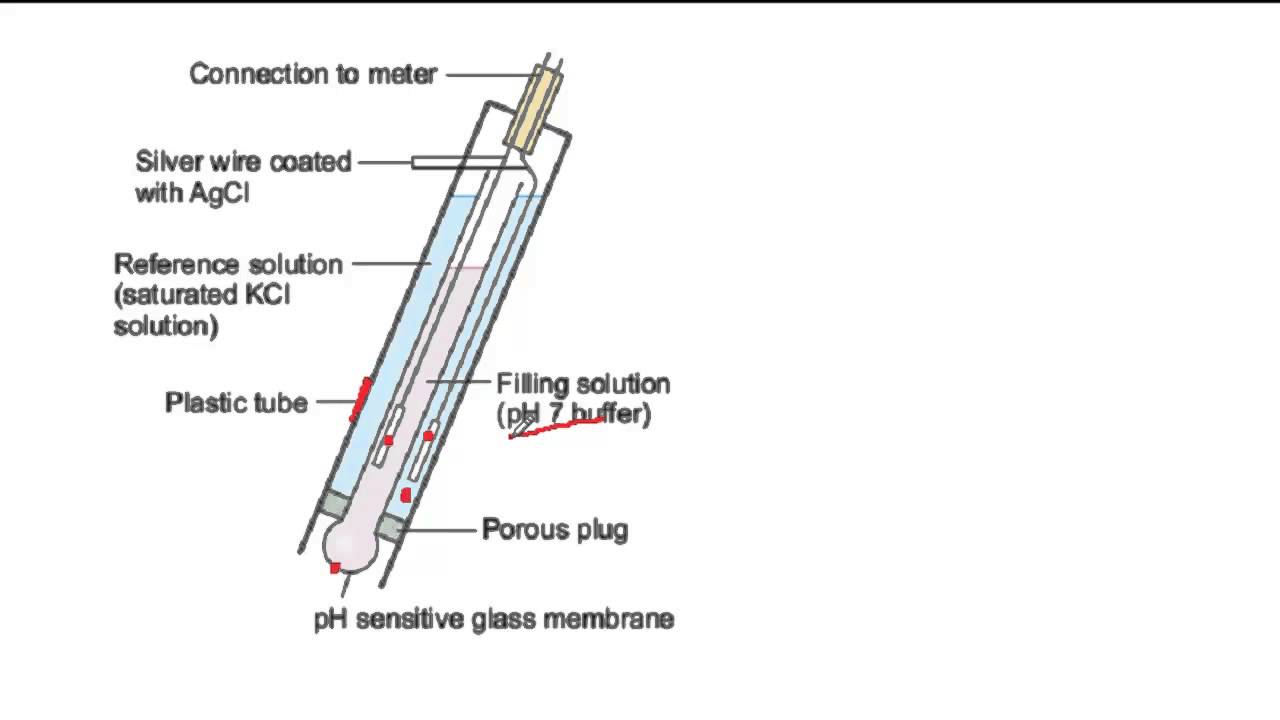 How A Ph Probe Works Youtube
