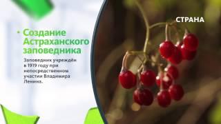 видео Заповедники Астраханской области