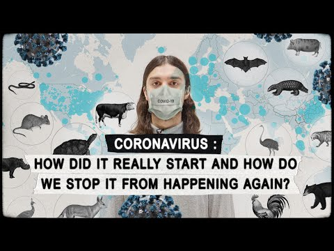 CORONAVIRUS: How Did It Really Start & How Do We Stop It From Happening Again? COVID-19
