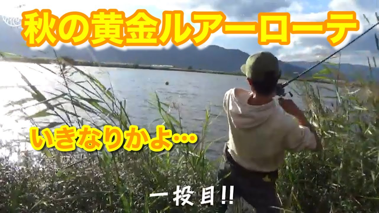 【秋のため池攻略】 初めての場所で連発させるために取るべき方法【水の旅# 21後編】