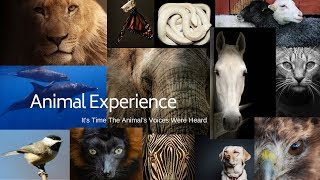 Animal Experience Episode 42: Handi-Awesome Animals