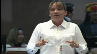 Sesión 440 del Pleno (21-03-2017)