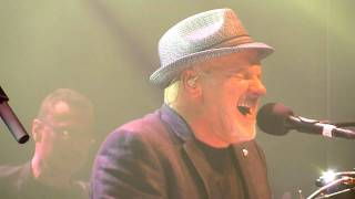 Paul Carrack - Dedicated @ 013 2011