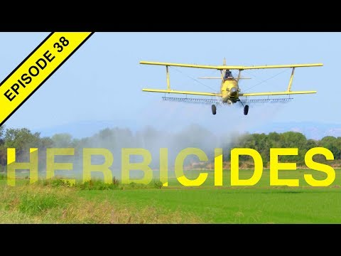Herbicide Weed Control and the TRUTH!