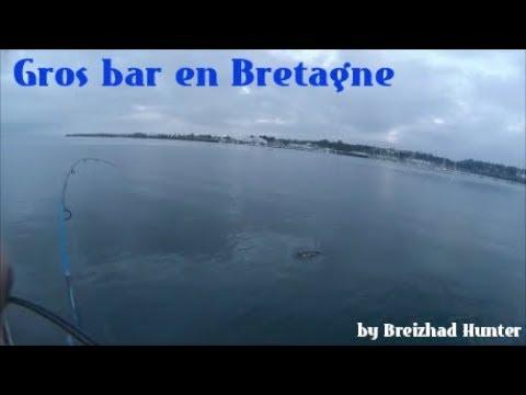 Pêche du Bar en Bateau : Mon record !