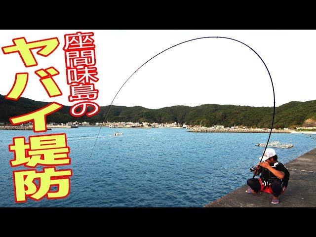 ヤ�イ堤防�大物を狙� 座間味島 #1