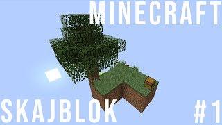 Początki bywają trudne | Minecraft Skajblok #1 /w Seba223311