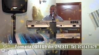 Formatia ORFEUS din ONESTI - SALCAMULE DE LA DRUM - Tel : 0745431679 - clip 5.mkv