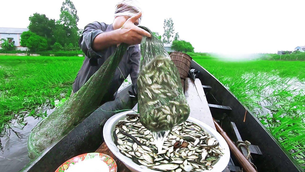 100% Real Natural Fishing   Awesome Village Bill    Fresh Fish Hunting.