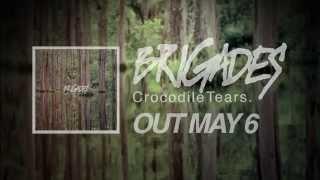 "Brigades ""Glass Casket"" Lyric Video"
