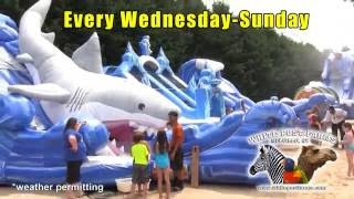 Summer Fun for the Family at White Post Farms!