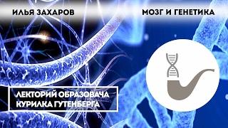 Илья Захаров — Мозг и генетика