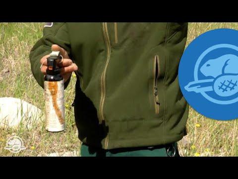How to Use Bear Spray - Banff National Park