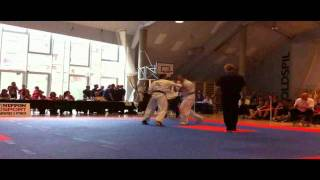 Kyokushin Karate Danish Open 2011 Finals