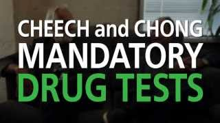 Cheech and Chong Take Stoner Tests for 4/20 | WHAT'S TRENDING