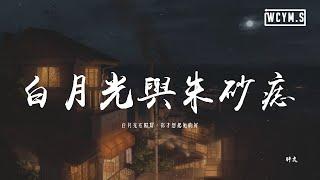 胖虎 - 白月光與朱砂痣「白月光在照耀,你才想起她的好」【動態歌詞/pīn yīn gē cí】
