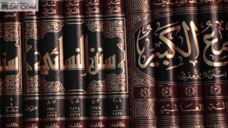 Уроки по шафи`итскому фикху (мусульманское право)Условия намаза