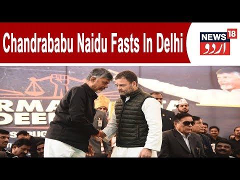 N Chandrababu Naidu Fasts In Delhi: Kejriwal, Rahul, TMC Attend In Show Of Strength