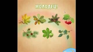 Деревья.  Видеоурок логопеда для детей 5 6 лет