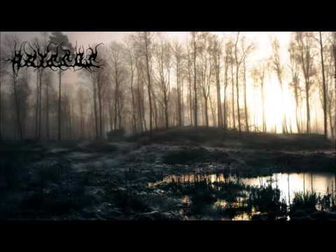 Assos  Misty Autumn Dance
