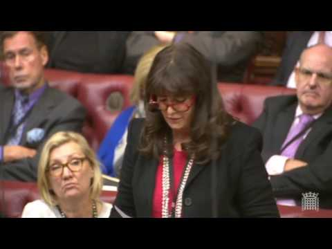 2017 03 01 UK HoL Brexit bill Lords Committee stage (day 2) - Committee of the Whole House chamber