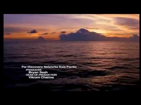 Soltuna Documentary