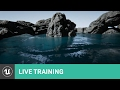 Water Surface Overview | Live Training |