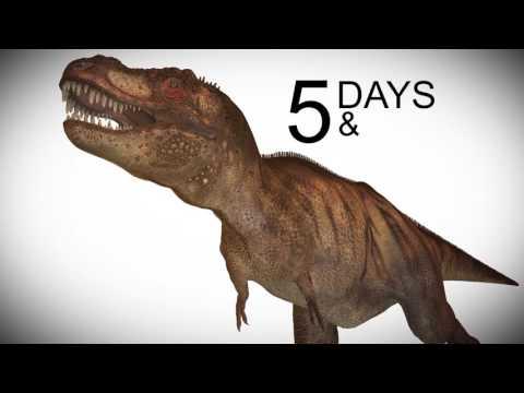 Dinosaur Tracks Found - You Will Surprise