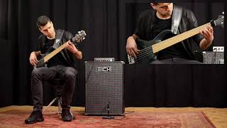 Eich Amplification 212M Cabinet + T-500 Bass Amp demo with Daniel van der Molen