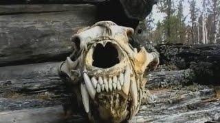 Чёртово озеро - фильм о Селькупах, коренных народах севера.