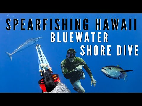 Spearfishing Hawaii Bluewater Shore Dive (with Aaron's Animals)