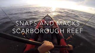 Scarborough Reef Fishing On Dragon Kayak Snapper, Spanish Mackerel, Eastern Frog Fish