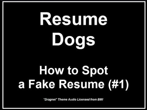 Resume Dogs - How to Spot a Fake Resume - YouTube - fake resume