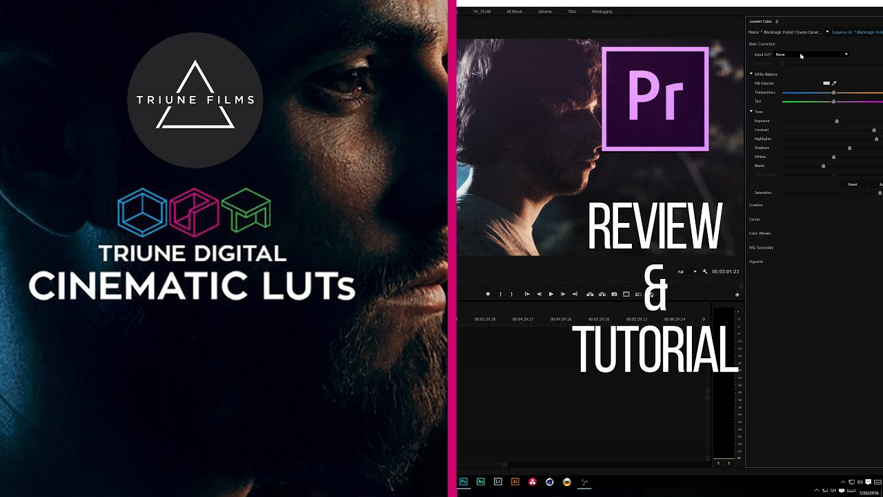 Triune Digital LUTs Collection (Win/Mac) (Updated 01.2019)