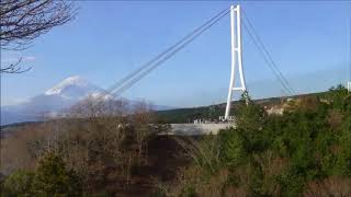 三島スカイウォーク(吊り橋)に行きましたが、通行料が・・ なので無料...