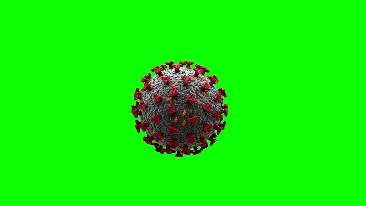 Green screen Coronavirus 3D model COVID 19 Animation FREE download