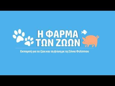 """Εκπομπή στον ASTRA """" Φίδια της Κύπρου """" Με τον Γιώργο Κωνσταντίνου -  29 06 2017"""