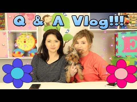 Little Kelly Vlogs - FIRST EVER Q&A! W/Little Carly