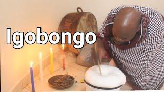Igobongo   Dr Mnguni