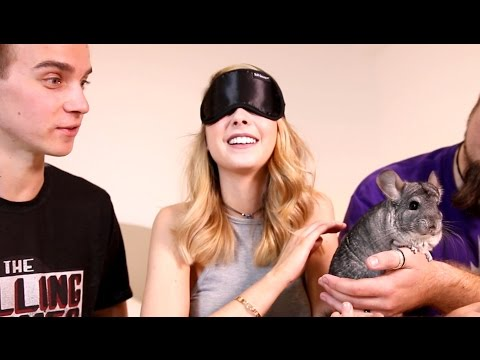 THE SUGG SIBLINGS MEET THE CUTEST ANIMAL