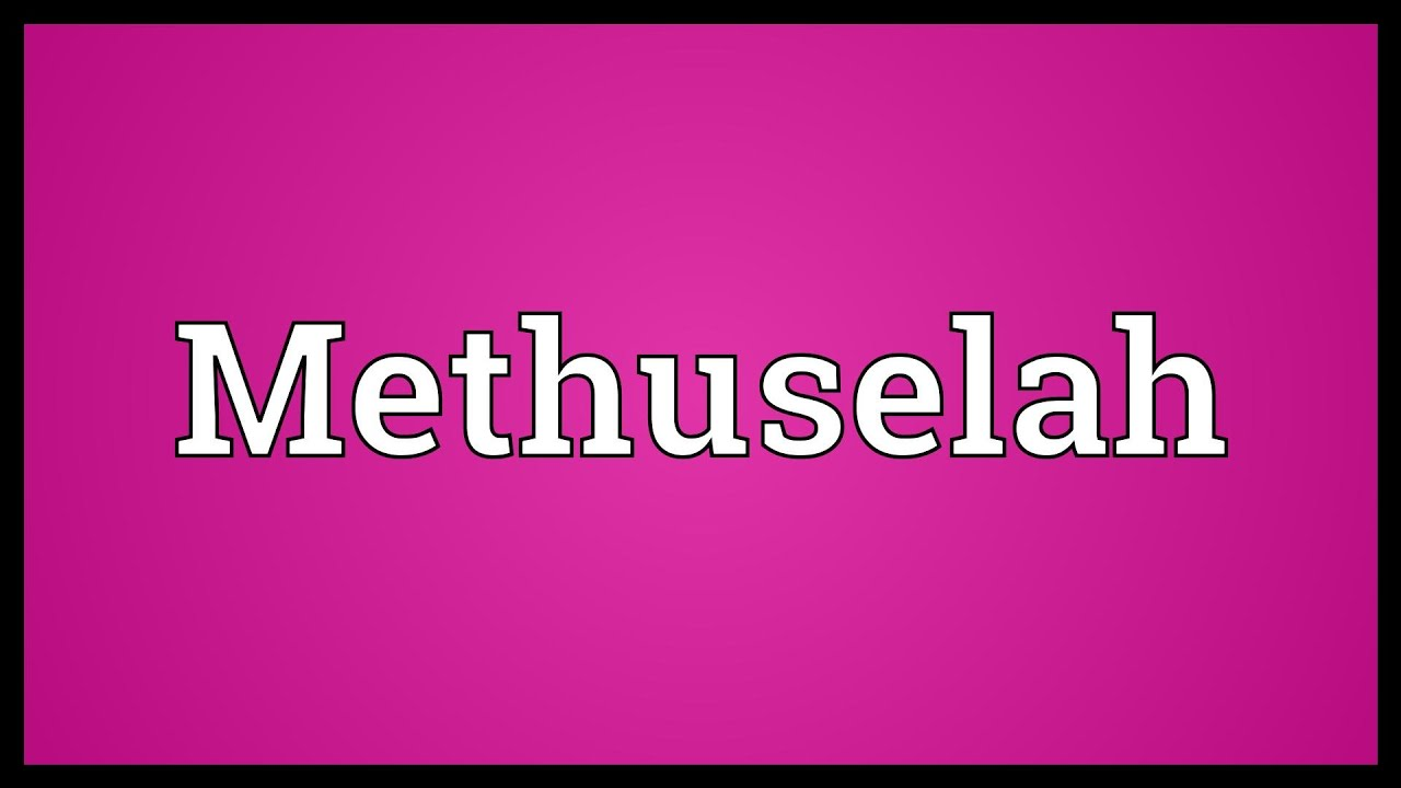 Methuselah Definition and Meaning - Bible Dictionary