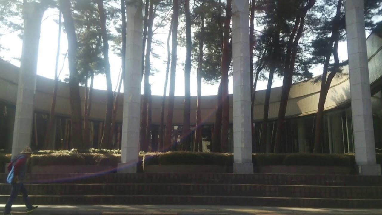 つくば市立中央図書館 建築 デザ...