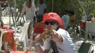 Доминикана отзывы туристов Dominican Republic(Отдых в Доминикане отзывы. Доминиканская республика отзывы.Dominican Republic Экскурсии в Доминикане отзывы http://tent..., 2013-06-02T15:04:24.000Z)