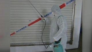 Aviaria In Cina: Il Nuovo Virus Colpisce Pechino