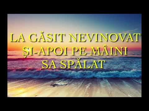 Download Negativ Original 👈 Sus în vârful Muntelui 2019👈 Marian din Murgeni