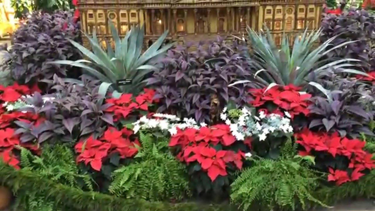 beautiful scenery video of the united states botanic garden in washington dc - Botanical Garden Washington Dc