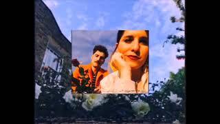 Palmaria - Moonlight (DIY Video)