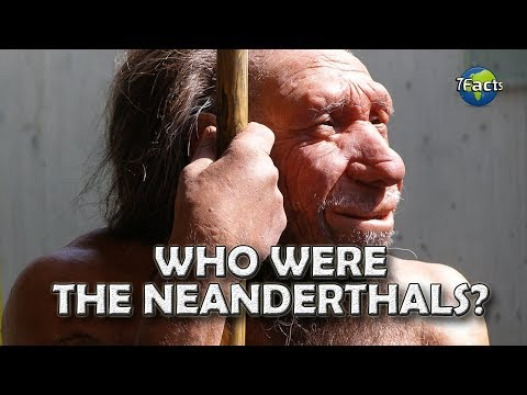 Who were the Neanderthals