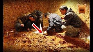 「考古專家」獲報河南發現戰國墓,墓室滿佈盜洞卻一件文物也沒丟,考古專家:差點被騙... 【楓牛愛世界 - HD】